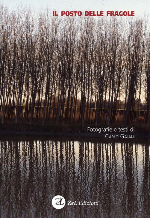 ZelEdizioni_Il-posto-delle-fragole_copertina